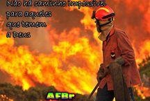 Firefighter - Bombeiro / Frases, textos, imagens