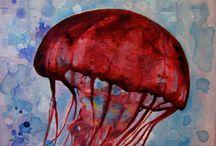 jelly fish / medúza