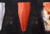 Pies - C6 - Fish Pie