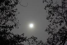 Sunlight & Moonlight