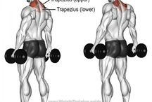 Trap exercises