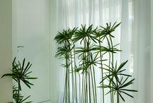 Design interior moderno