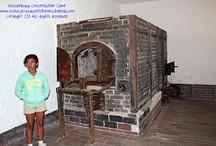 Home Education Live {Linky}