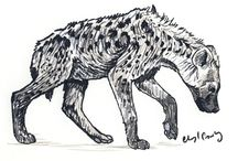 B_Hyenas