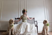 Doggie friends at weddings / Dogs at weddings,