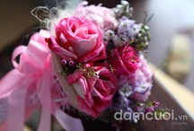 Happy Wedding Ngoc Chau &  Hoang Nam - 17.06.2012
