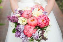 Wedding  / by Jesstar666