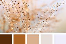 barevné paletky