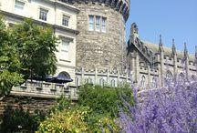 Dublin / 2015 Incentive Trip for ESI representatives.