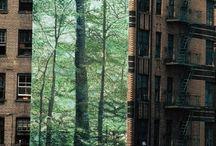 urban forest.