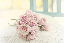 <3 Favourite Flower <3