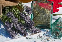 Herb and Spices Blends