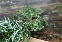 Recetas de flores de Laforesta... Floral recibes / Recetas y remedios hechos con flores y plantas