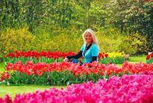 Ogrody Keukenhof, Holandia / Co powiecie na wiosenną eksplozję zapachów i kolorów niezwykłych Ogrodów Keukenhof w Holandii? Dywany kwiatów, niezwykłe gatunki tulipanów, cudowne ekspozycje i oszałamiające aromaty - Ogrody Keukenhof to jedno z tych miejsc, które odwiedzić po prostu trzeba. Z Eurocampem pobyt od 16 do 26 kwietnia kosztuje tylko 1022 zł za całą rodzinę! Kto jedzie z nami do Holandii wiosną?  http://bit.ly/1ORjqQj