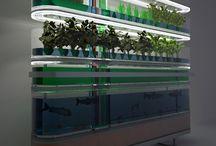 Bio n farming