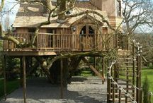 Architect_Trendy Tree Houses / by Karen Sermersheim
