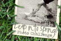 Leap into Spring! / http://www.projectalicia.com http://www.liveandloveoutloud.com http://www.bumblesandlight.com