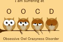 Obsessive Owl Crazyness Disorder