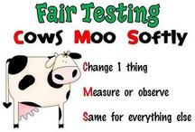 Science Testing