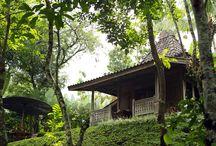 Plataran Hotels Indonesien / Die Gruppe Plataran Hotels & Resorts steht für kleinere Boutiquehotels in Indonesien an ausgesuchten Standorten. Besonders hervorzuheben sind das Plataran Borobudur auf Java und die beiden Hotels auf Bali in Canggu und Ubud. ✔ Plataran Bali für Sie besucht im Okt. 2014. ✔ http://bit.ly/plataran-hotels