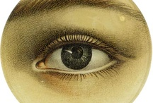 John Derian / by Catherine Bates