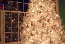 Christmas/Winter Photo's