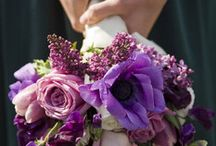 flowers / by Marla Kotowski Anderson