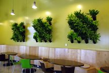 Our Interior Designs