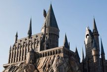 Universal's Island of Adventure / See The Wizarding World of Harry Potter's Hogsmeade at Islands of Adventure.  Ride the Incredible Hulk, Spider-Man, Bluto's Bilge Rat, Ripsaw Falls, Forbidden Journey, Dueling Dragons, Jurassic Park.  Drink Butterbeer & eat at The Three Broomsticks & Mythos.