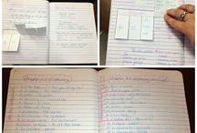 Clase de Espanol / Spanish class ideas!