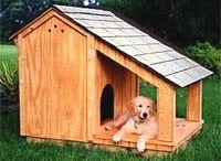 Érdekes kutya házak