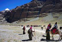 Mount Kailash Reisen / Ausgefwählte Trekkingtouren zur Umrundung des heiligen Mount Kailash im westlichen Tibet.