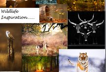 My own Inspiration / Sometimes you have the feeling of making an ispiration bord.