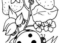 INSECTS COLORING BOOK / INSECTS COLORING PAGES