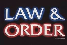 Law and Order Franchise