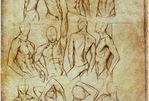 Male Bodys