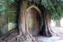 Enchanting Entrances