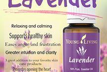 MindBodyFood YL Essential Oils