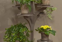 Plant Stands / by Cynthia Hatchell