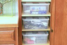 Organization / Organization