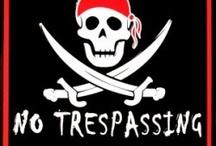 Pirates & Ninjas