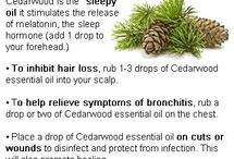 Essential Oil uses / by Melissa Leader