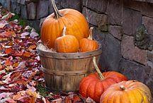 I am so ready for fall! / by Tosha Hirt