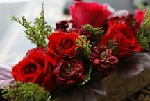 【ボルドー&赤】プリザーブド / Flower noteのプリザーブドアレンジ。  ボルドー&赤のギャラリーです