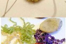Korálky