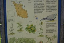 halta szwecja  naturreservat