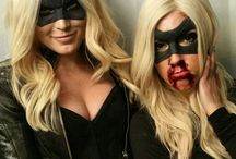Arrow -Black Canary /Canary