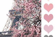 Paleta de colores / Inspiraciónes a todo color