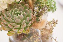 Flowers & Decor - Victoria's wedding / by Amanda Leffingwell