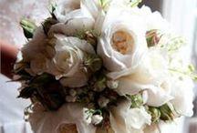 Wedding!!! / by Bernadette Pisani